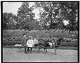 Photo: Goat team,children,animals,carts,wagons,Highland Park,Rochester,New York,NY,1900