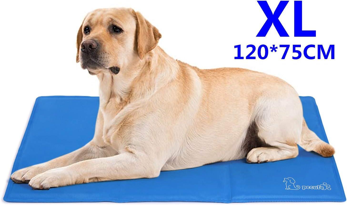 Pecute Alfombrilla de Refrigeración Animales Nevera y Manta para Perro Fresco Cojín Azul Nevera Techo Perfecta para Camas de Suelo Couch Zwinger Auto (XL(75*120cm))