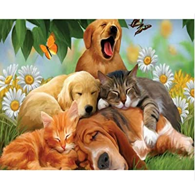 yangww Jigsaw Puzzle 500 Pieces Adult Children Diy3D Set Jigsaw Toy Cats and Dogs Pattern Classic Jigsaw Puzzle Wooden Toy Puzzle Unique Gift Home Decoration,53x38cm: Home & Kitchen