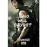 WALKING DEAD ウォーキングデッド (2019年秋シーズン10) - Daryl Survive/ポスター 【公式/オフィシャル】