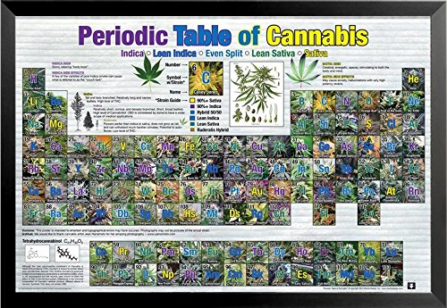 Buyartforless Framed Periodic Table of Cannabis