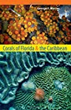 Corals of Florida and the Caribbean, George F. Warner, 0813041651