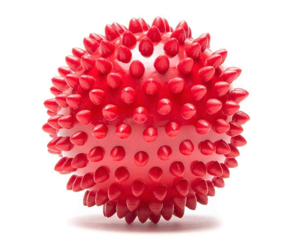 Buy Lal Pet Wowdogbox Spiked Rubber Ball for Dog Training Online at Low  Prices in India - Amazon.in