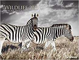 2019 Wildlife Poster Calender - Photography Calendar - Animal Calender - 64 x48 cm