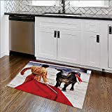 Rug for Home, Office traditional corrida bullfight in spain bulfight has been prohibited High Absorbency W39'' x H16''