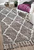nuLOOM Hand Knotted Fez Trellis Shag Area Rug, Grey, 8' x 10'