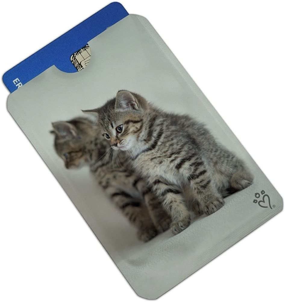 Domestic Shorthair Cats Mirror Image Credit Card RFID Blocker Holder Protector Wallet Purse Sleeves Set of 4