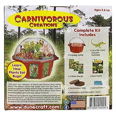 DuneCraft Carnivorous Creations Dome Terrarium: Toys & Games