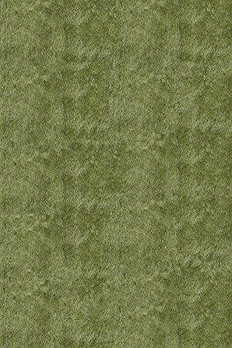 - Momeni Luster Apple Green Rug Rug Size: Round 4'