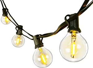 Arbrac LED Outdoor String Lights 100FT 1W Globe Bulb Weatherproof with 64 Clear Bulbs(4 Spare) for Cafe Garden Backyard Porch Bistro Home Decor Wedding