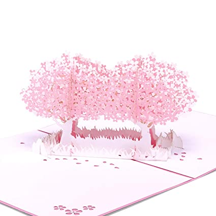 Amazon Paper Spiritz Cherry Blossom Bouquet Pop Up Flower Cards