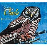 Twelve Owls