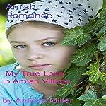 My True Love in Amish Village | Amirna Miller