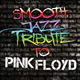 Smooth Jazz Tribute to Pink Fl [Import anglais]