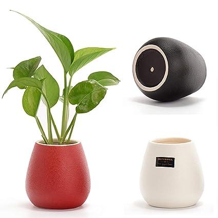 225 & 3 Inch Flower Pots \u0026 225