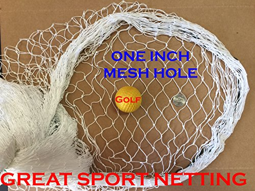 10Ft X 25Ft Fishing Net, Sport Netting for Golf Backstop, Hockey, La Crosse, Barrier, Sports, Fish by Mnet