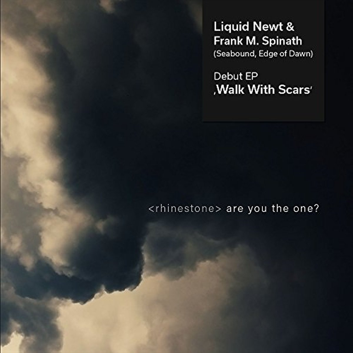 Liquid newt & frank m. spinath - Walk With Scars