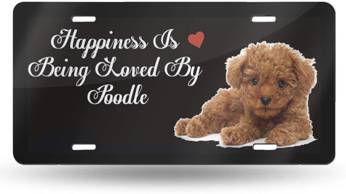 Happiness is Being Loved by Poodle Funny License Plate Sturdy and Beautiful License Plate Aluminum License Plate Cover Holders for Cars Decorative Front Plate Holiday Christmas Ideas 2019