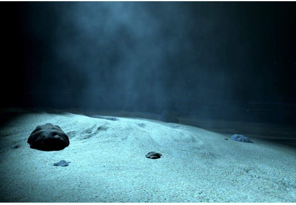 Vinyl 8x6.5ft Underwater Dark Blue Backgrouds for Photography Sand Seabed Rock Stone Marine Theme Party Banner Aquarium Photocall Birthday Photobooth Under The Sea Landscape Photo Studio