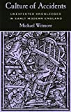 Culture of Accidents, Michael Witmore, 0804735565