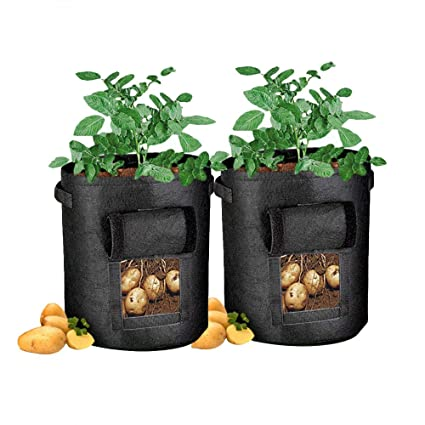 Amazon.com: DegGod - Bolsas de cultivo de plantas (2 ...