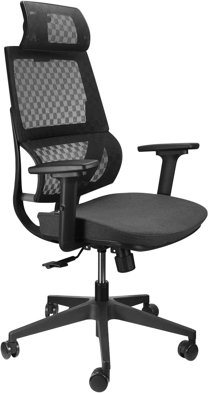 Argomax Mesh Office Chair, Ergonomics X Chair Computer Chair Desk Chair High Back Chair w/ 360 Swivel Self Adjustable Headrest and 3D Armrest (Black)