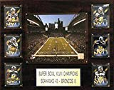 C&I Collectables NFL Seattle Seahawks Men's CenturyLink Field Stadium Plaque, 16 x 20