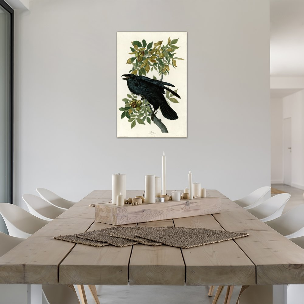 0.75-Inch Deep iCanvasART VAC357-1PC3-18x12 Raven Canvas Print by Vintage Apple Collection 18 by 12-Inch