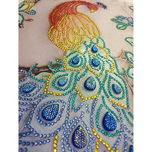 Special Shaped Diamond Painting,Peacock Pattern DIY 5D Partial Drill Crystal Rhinestone Embroidery Cross Stitch Kits (B, 28X45cm)