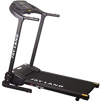 Skyland Treadmill EM-1259Black