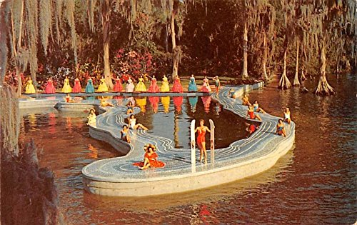 Amazon.com: Esther Williams Swimming Pool Cypress Gardens ...