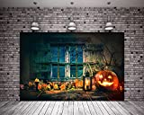 HMT 7X5ft (220cmX150cm) Old House Halloween Backdrops Spiderweb Wood Floor Wood Window Photography Background with Top Pocket