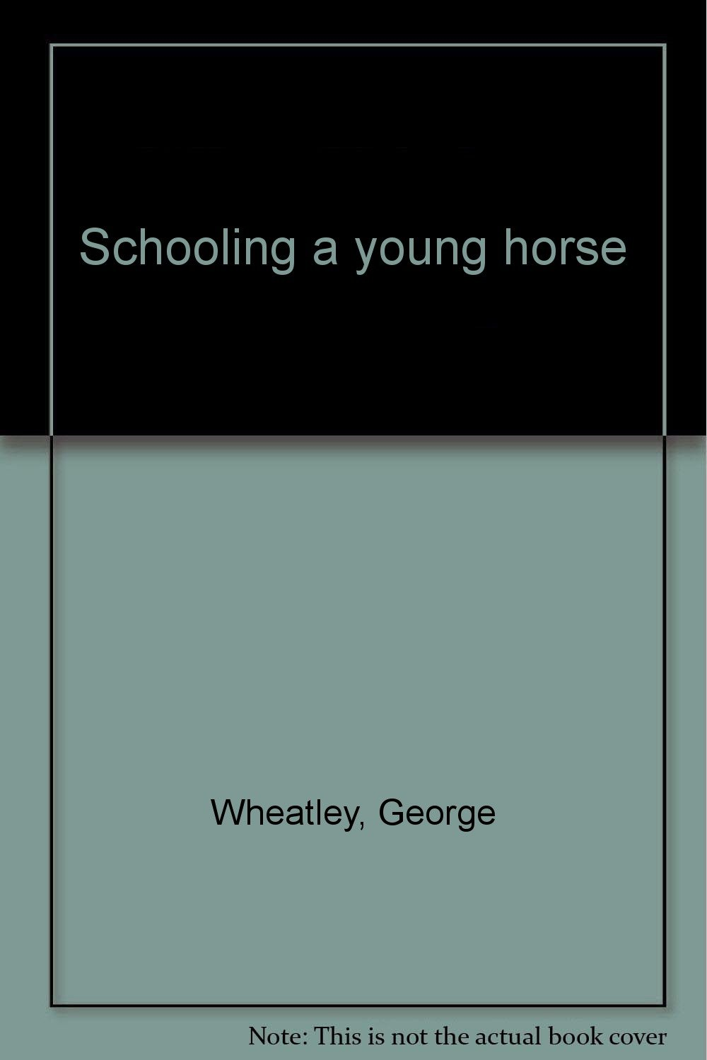 Schooling a young horse