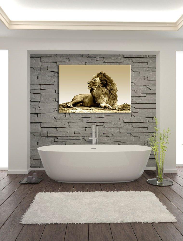 Liegender Löwe Bild auf Leinwand, XXL riesige riesige riesige Bilder fertig gerahmt mit Keilrahmen, Kunstdruck auf Wandbild mit Rahmen, guenstiger als Gemaelde oder Bild, kein Poster oder Plakat, Format 120x80 cm b08433
