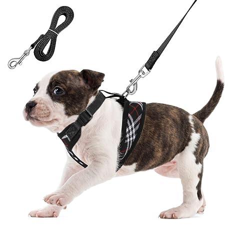 arnes perro pequeño arnes gato- Unihubys Arnés de perro de malla blanda No Pull Comfort