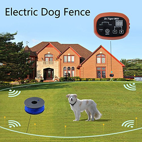 2 Dog Electric Fence System In-ground DIY Containment with 650 Ft Wire,Receiver Send Beeps and Shock Correction WCF-1 by Dr.Tiger