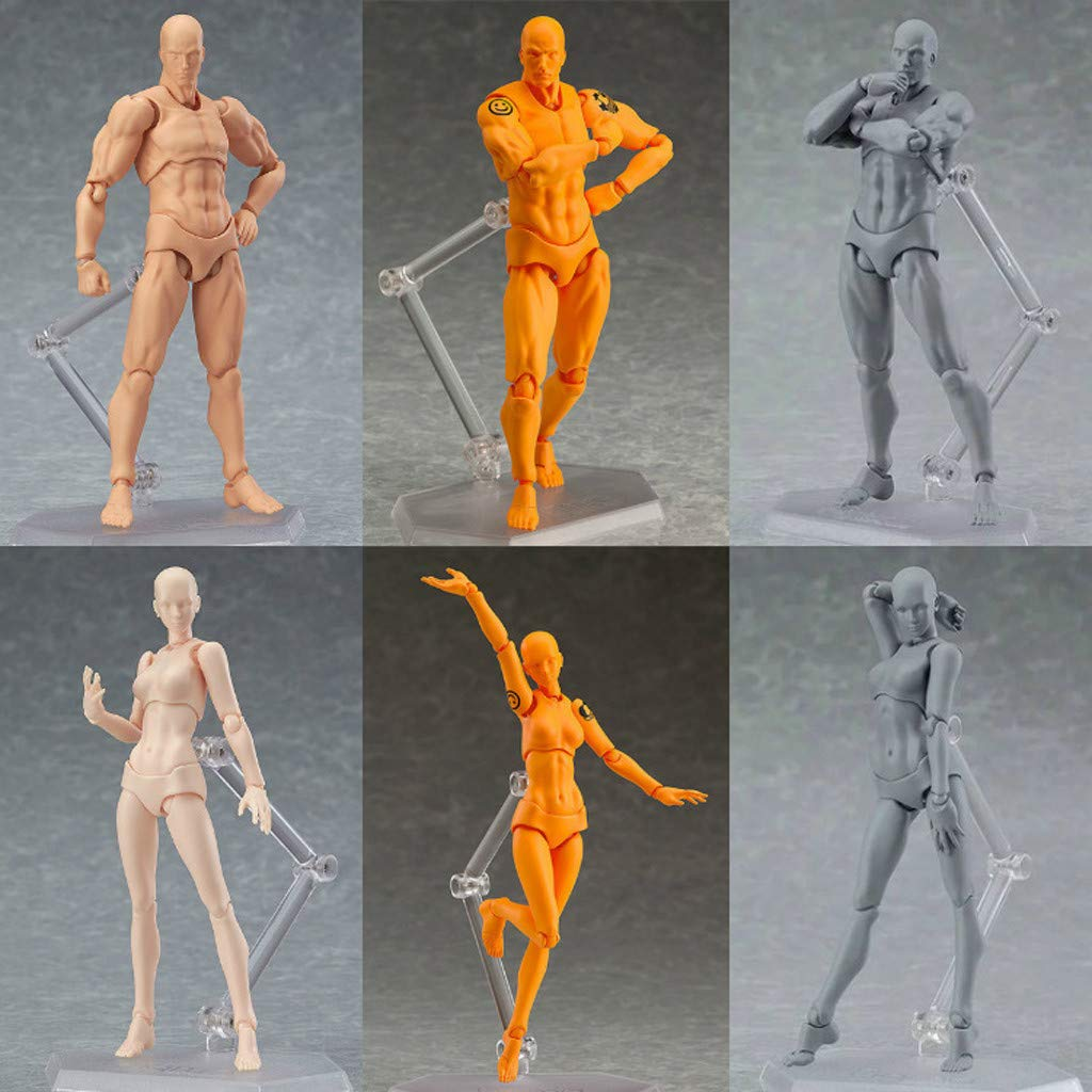 Man /& Women Mannequin Body Kun Doll Body-Chan Male//Female Action Figure Set,Suitable for Sketching Denzar 2pcs Action Figure Drawing Models Drawing Grey Artist Painting
