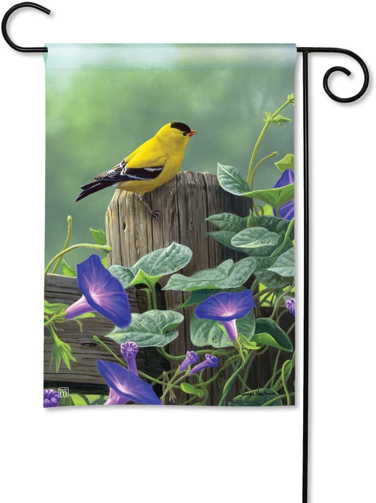 BreezeArt Studio M Goldfinch Perch Decorative Spring Summer Birds Garden Flag – Premium Quality, 12.5 x 18 Inches