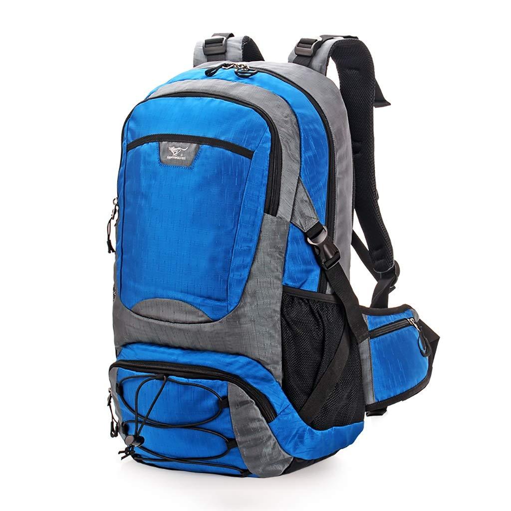 旅行バッグバックパックバックパック男性と女性の屋外でのトレンドパッケージ防水大容量多機能 (色 : C)  C B07P4XCZ38