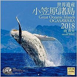 Amazon.co.jp: 世界遺産 小笠原...