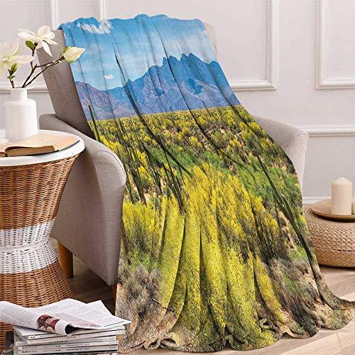 - Betterull Cactus Throw Blanket Photo Image Landscape of Desert Arid Field of Cactus Stones Spikes Leaves Artwork Velvet Plush Throw Blanket 60x36 Inch Multicolor