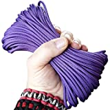 Paracord Jewel of Egypt Purple 50 ft. Hank, 7 Internal Strands, 550 Lb. Break Strength.  Military Survival Parachute Cord for Bracelets & Projects.  Guaranteed Made In US.  Includes 2 eBooks.