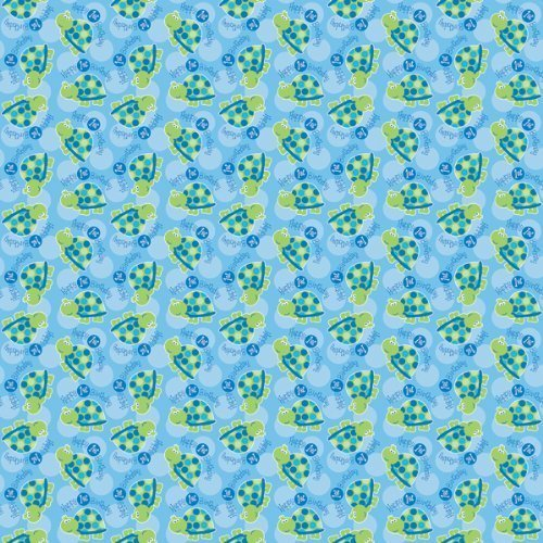 Printed Gift Wrap 30 Wide 5 Foot Roll First Birthday Turtle Amazoncouk Toys Games