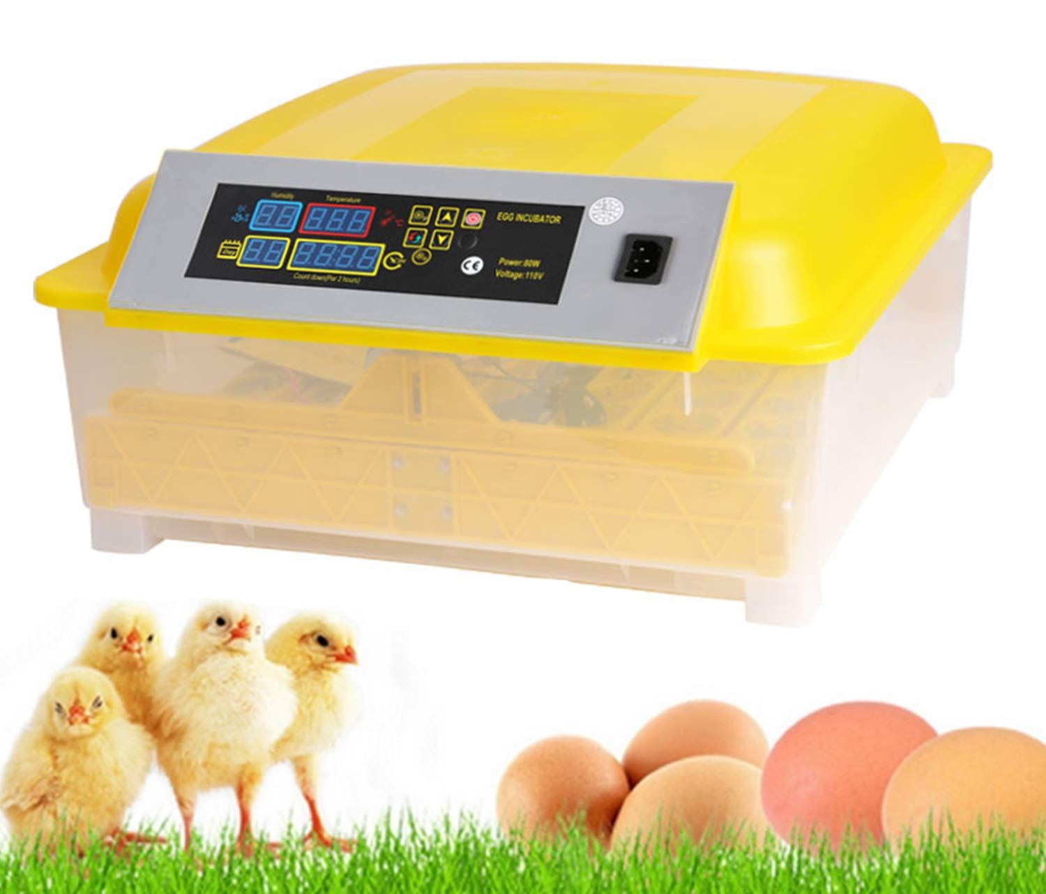 Automatic 48 Egg Hatcher Incubator with Temperature Control, Digital Poultry General Purpose Incubators for Chickens Ducks Birds