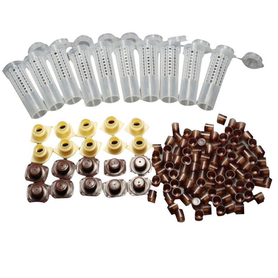 Cl/é universelle /à filtre /à huile carr/é femelle 1//2 Bgs 8395 /Ø 60-80 mm