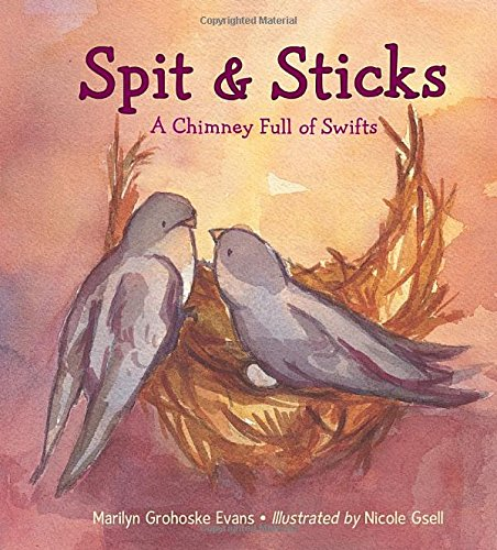 Spit & Sticks: A Chimney Full of Swifts