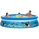 Intex 10ft X 30in Ocean Reef Easy Set Pool Set with Filter Pump
