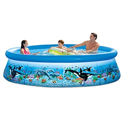 Intex 28125EH 10ft X 30in Ocean Reef Easy Set Pool Set