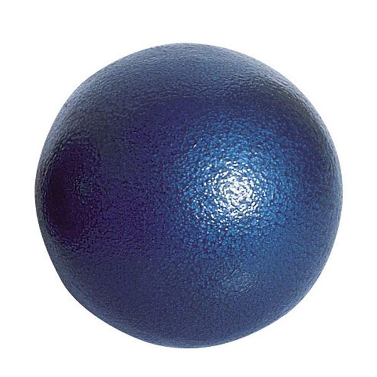 Visiodirect Poids Scolaire en Fonte Coloris Bleu - Poids 2 kg - Diamè tre : 80 mm