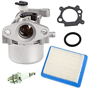 TOPEMAI 799866 Carburetor for Briggs Stratton 794304 799871 796707 790845 Toro Craftsman Lawn Mower with 491588 Air Filter